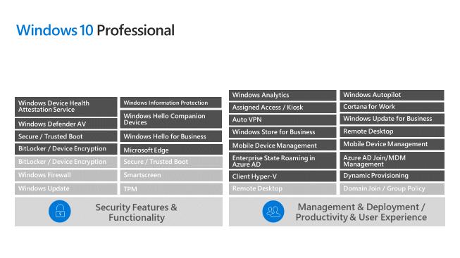 Windows 10 Professional Enhancements